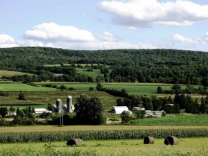 farms-upstate-new-york